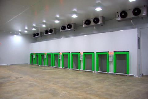 Fresh-to-go-distribution-centre-2